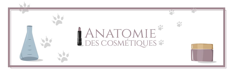 Anatomie des Cosmétiques - Au coeur des cosmétiques
